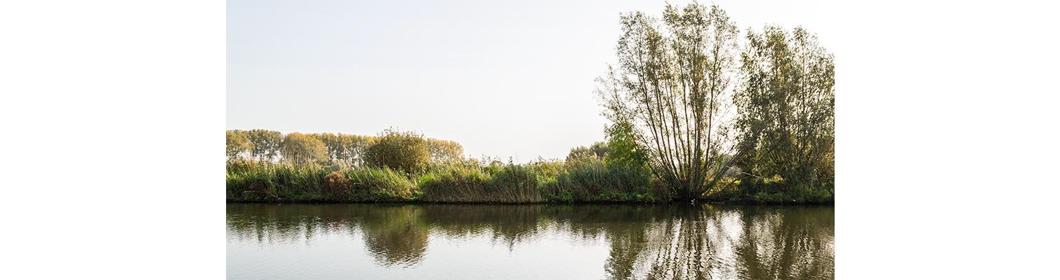 Walleken-hoofdfoto-omgeving-ipad